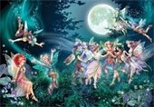 Fairies and Friends