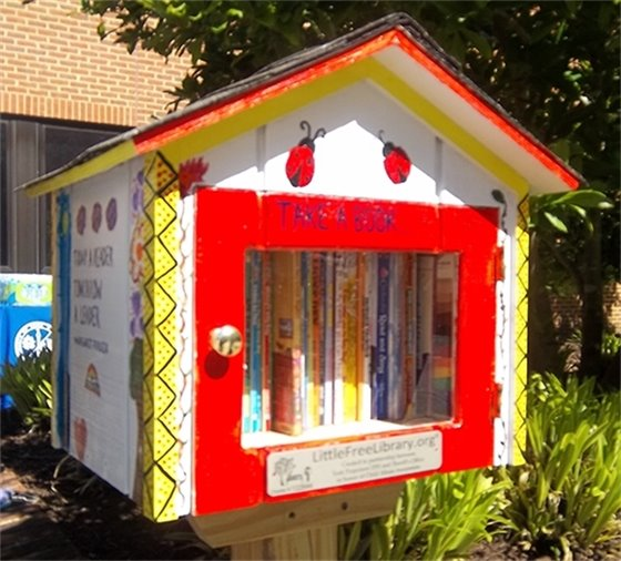 The Little Free Libraries