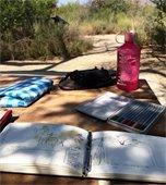 Nature Journaling Walk & Talk at New Quarter Park