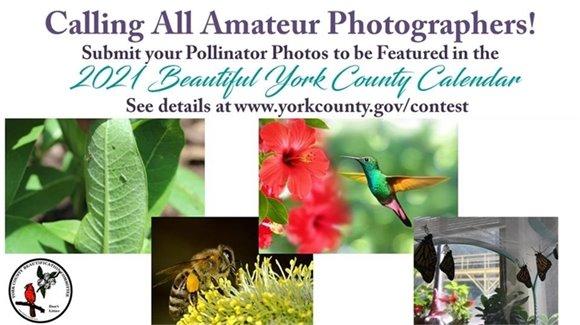 2021 Beautiful York County Calendar Contest