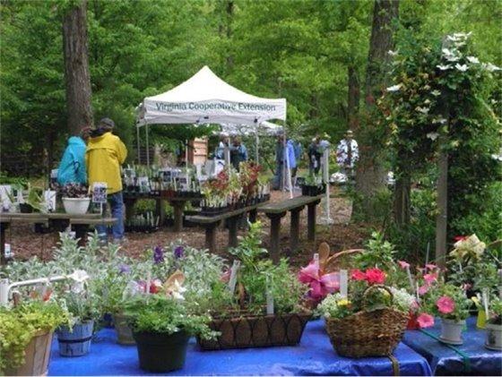 York/Poquoson Master Gardeners' annual spring plant sale