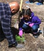 Planting for Schoolyard Habitats Garden