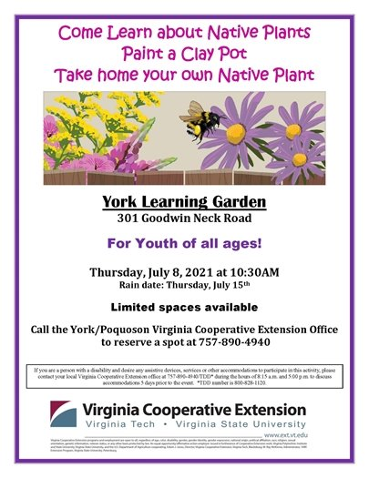 Learn about Native Plants, paint a clay pot and take home a plant