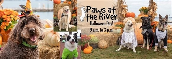 It's a Farmers Market Dedicated to Animal Rescue!