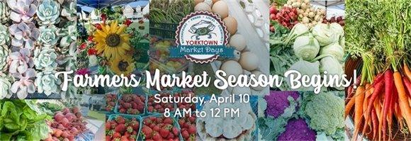 Yorktown's Farmers Market is Back!