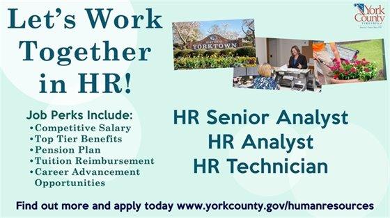 Let's Work Together in HR!