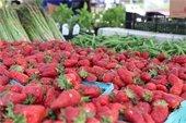 Yorktown Market Days participates in SNAP's Fresh Match Program