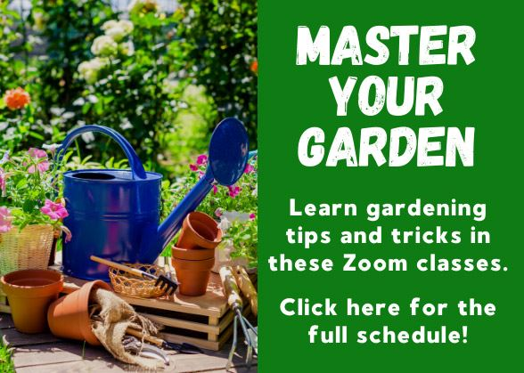 Learn gardening tips and tricks in these Zoom classes